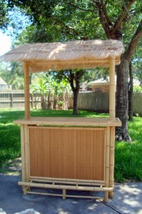 Our new tiki bar.  Isn't it cute.  OK, but it was FREE. That's what I thought.